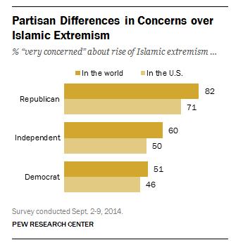 Pew Islam Concerns