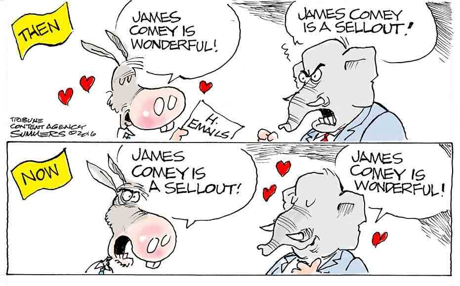 cow-comey-is-wonderful