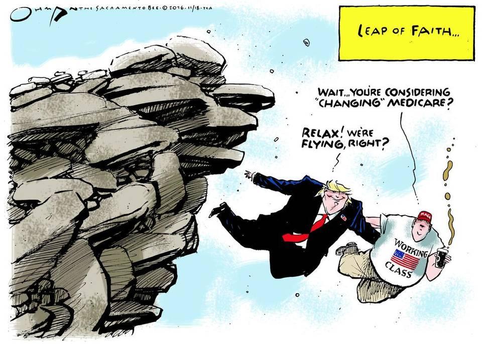 cow-leap-of-faith