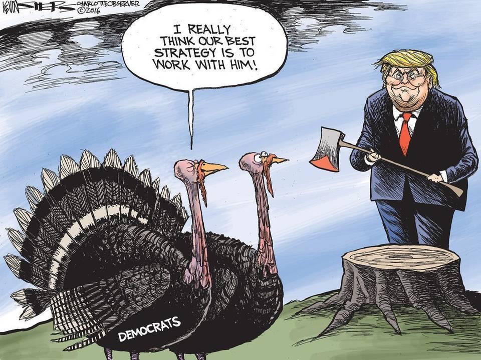 cow-turkey-talk